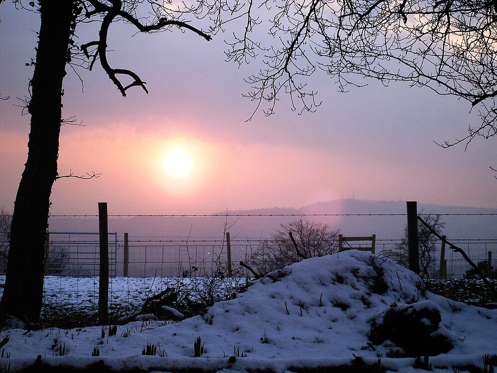 Winter Sunset Scene by Nx75