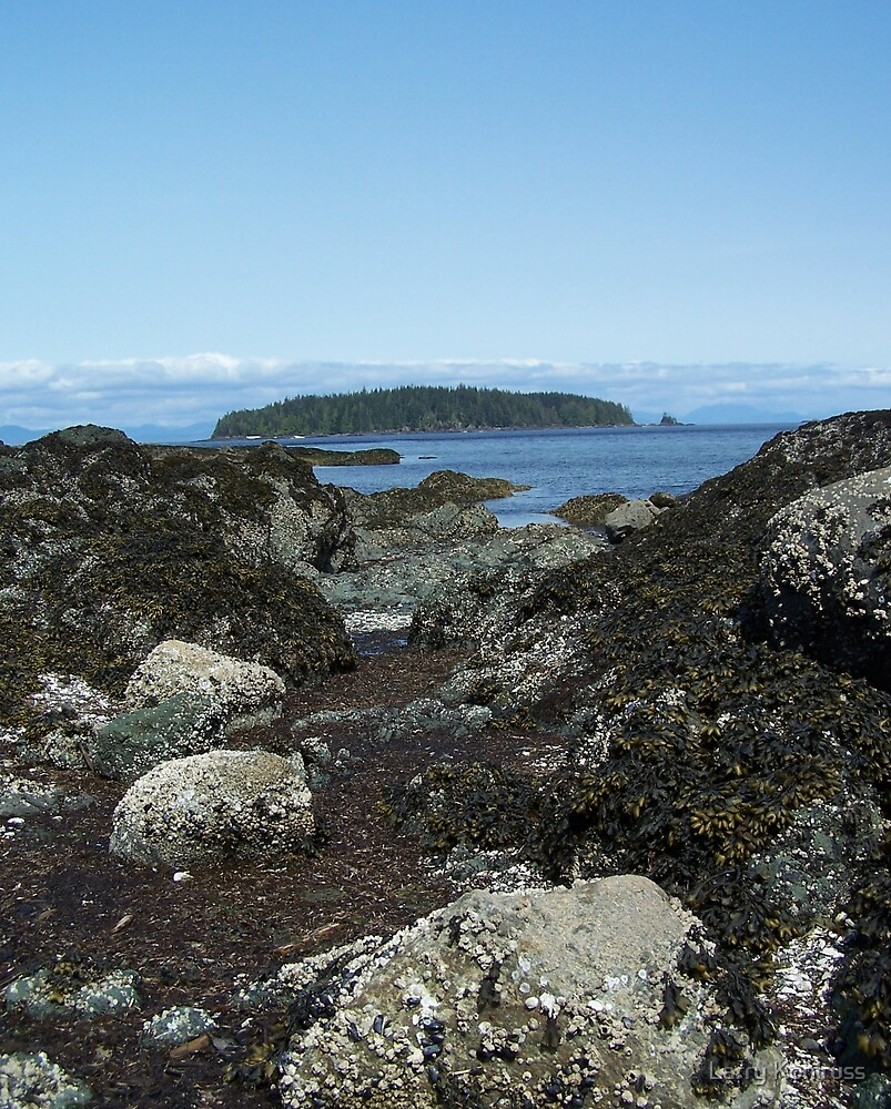Beaver Cove, Port Hardy BC Canada. 2 by Larry Kohlruss