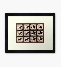 Horse Galloping: Eadweard Muybridge, 1879 Framed Print