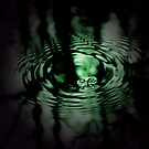 WaterWalker by TheNatureOfThings
