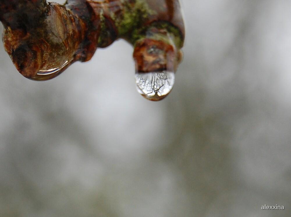 thaw by alexxina