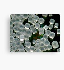 Grains of Salt Canvas Print