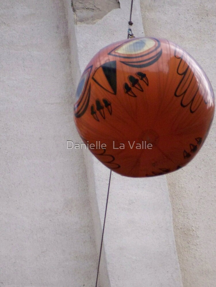 Owl Balloon 1 by Danielle  La Valle