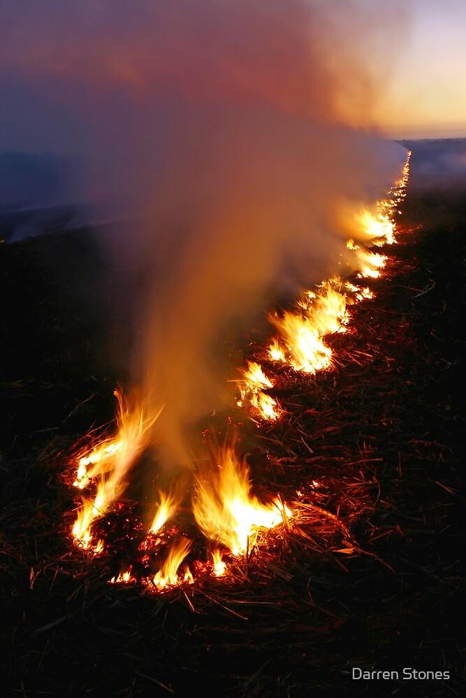 Burning off at Bundaberg by Darren Stones