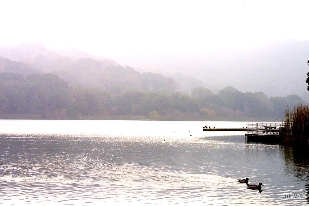 Reservoir by mcval