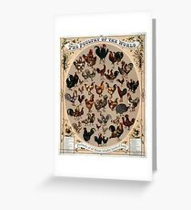 Antique Infographic - The Poultry of the World (1868) Greeting Card
