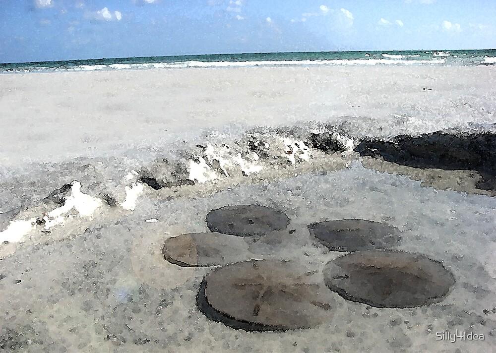 Sand dollars on the Beach 5 by Silly4Idea
