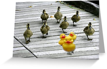 """Ten Little Ducks Went Out One Day"" by Karen Cougan"