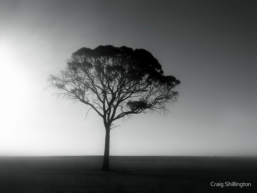 Goodbye by Craig Shillington
