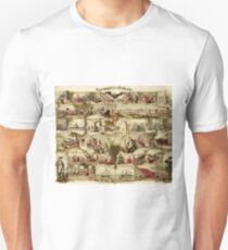 Antique American Poster - Centennial Mirror (1876) T-Shirt