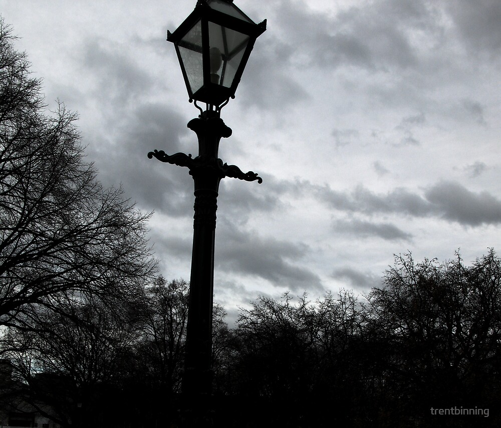 lamp and sky, hobart by trentbinning