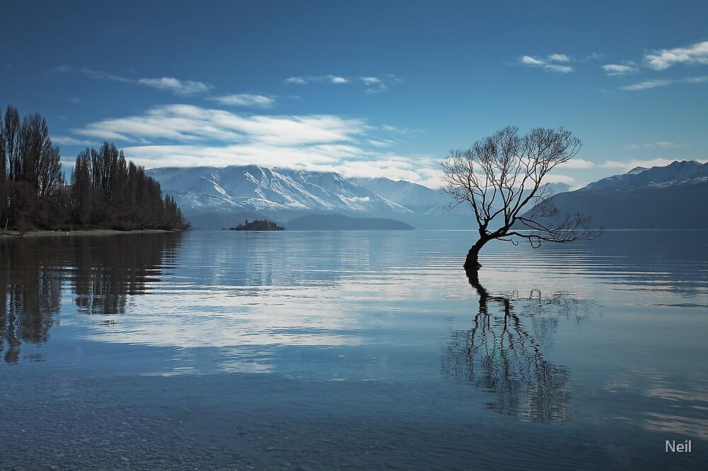 Lake Wanaka in Winter by Neil