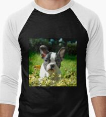 French bulldog puppy behind the foliage Men's Baseball ¾ T-Shirt