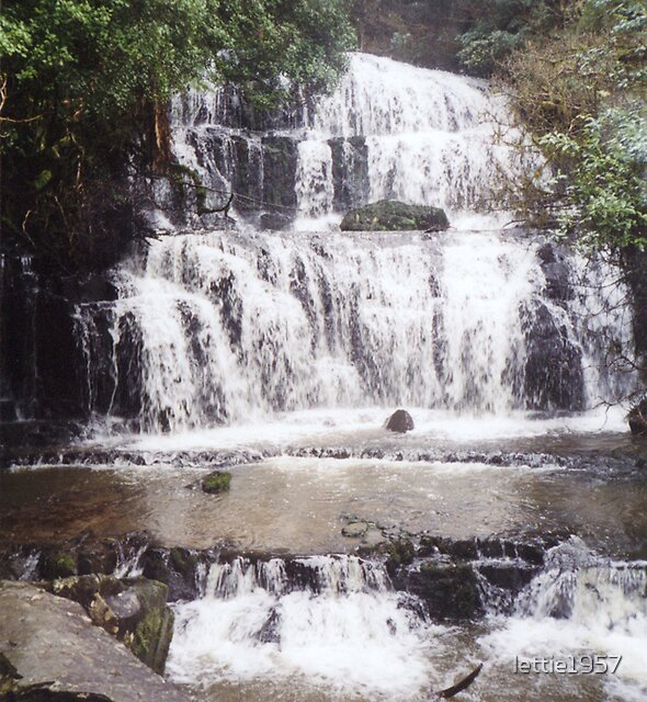 Purakanui Falls - Owaka region South Island by lettie1957
