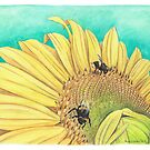 Sunflower and Bees by Meaghan Roberts