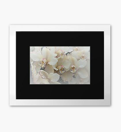 The Secret to a Orchid Framed Print