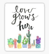 Love Grows Here Quote Sticker