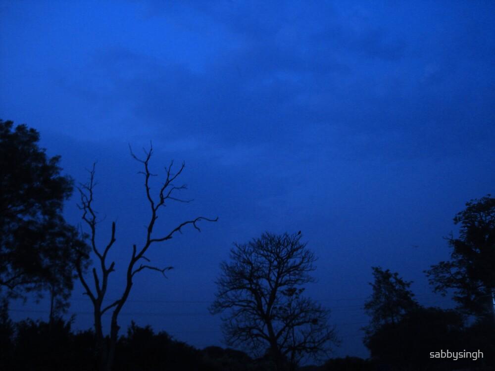 Endless Sky by sabbysingh