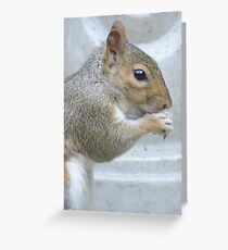 Frequent Companion Greeting Card