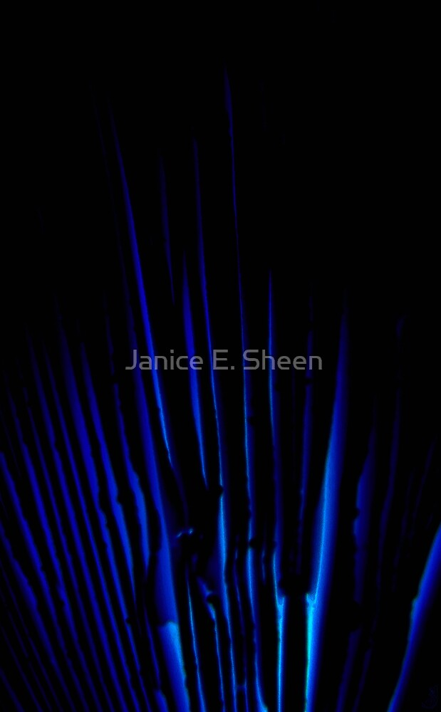 fire at midnight by Janice E. Sheen