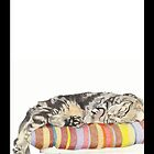 Relaxed Cat by Mariana Musa