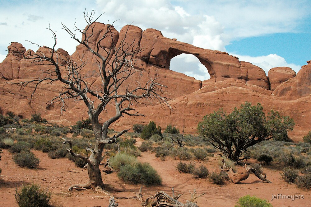 Arch with Tree by jeffmeyers