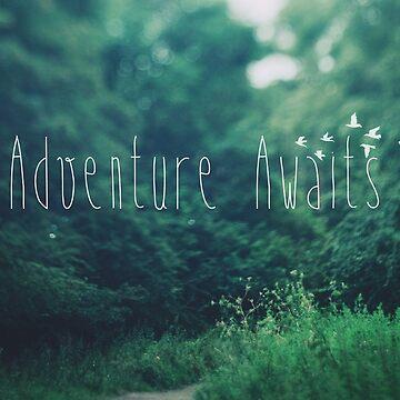 Adventure Awaits by IndeaVanmerllin