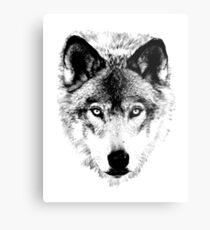 Wolf Face. Digital Wildlife Image. Metal Print