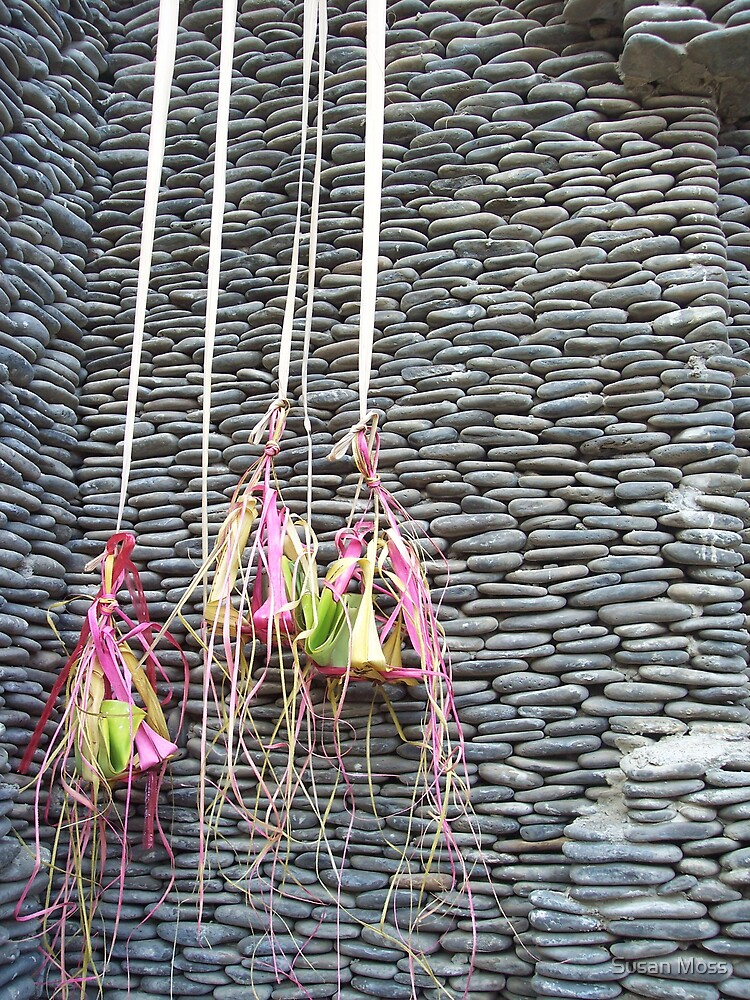 Textures of Bali  10 by Susan Moss