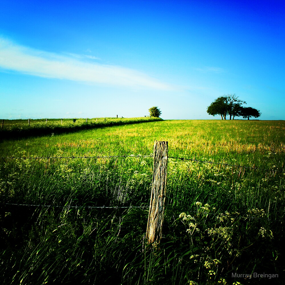 open space by Murray Breingan