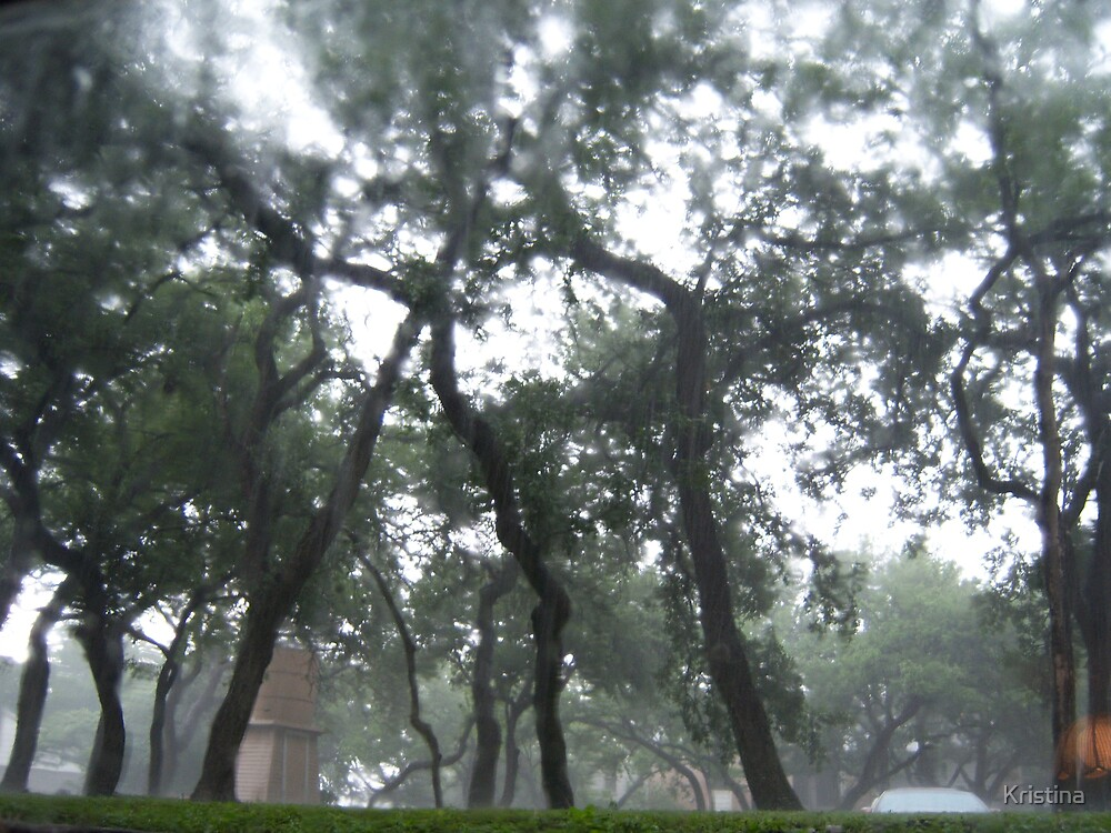 rainy day by Kristina