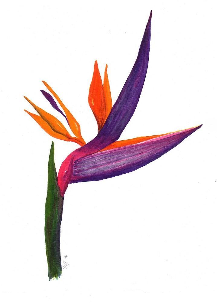 Bird of paradise 2004 by Kristyna  Silova