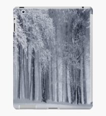 Snow Forest Winter Painting iPad Case/Skin