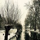 Willows in winter by Hans Bax