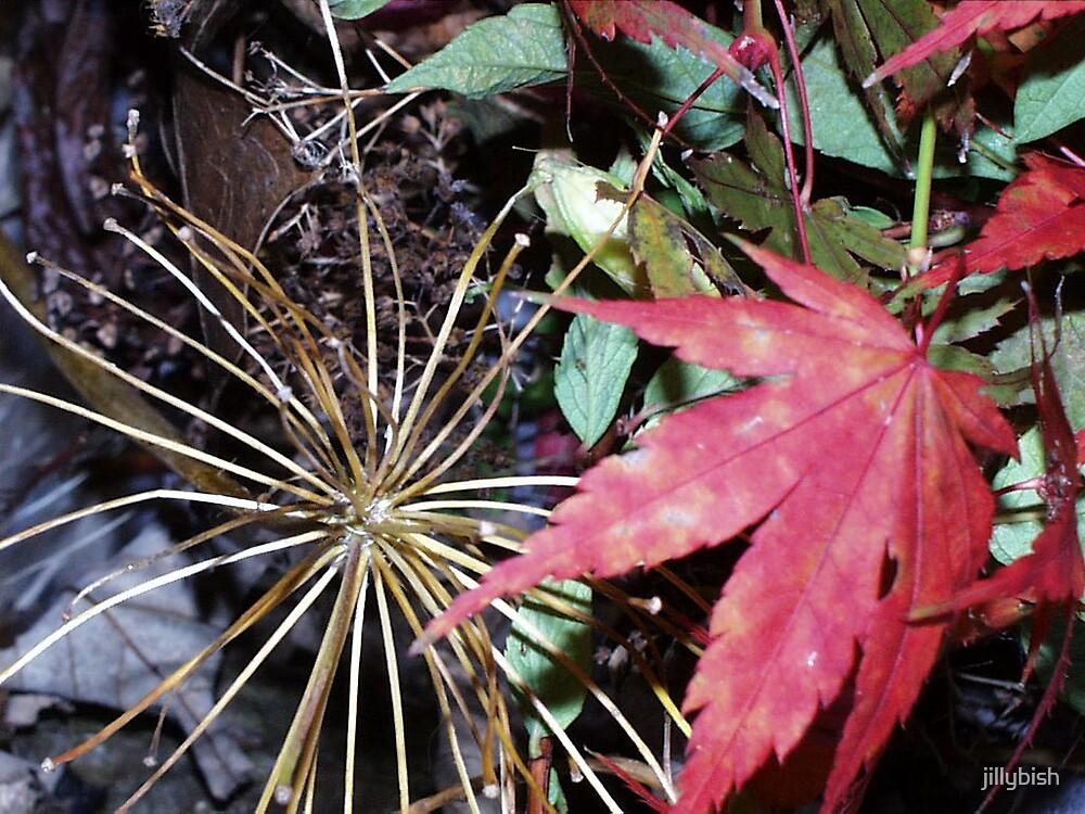 Fall by jillybish