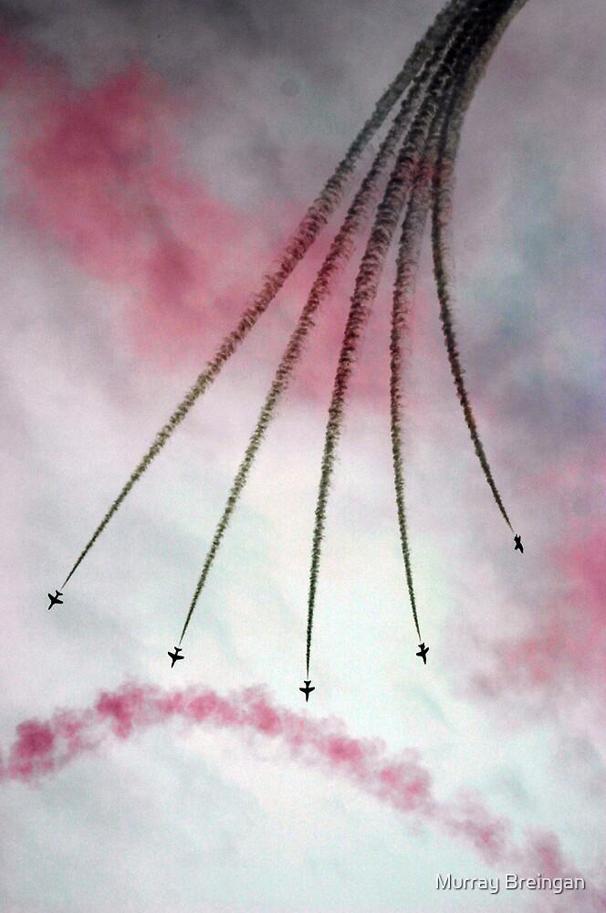 Aerobatic war Machine's by Murray Breingan
