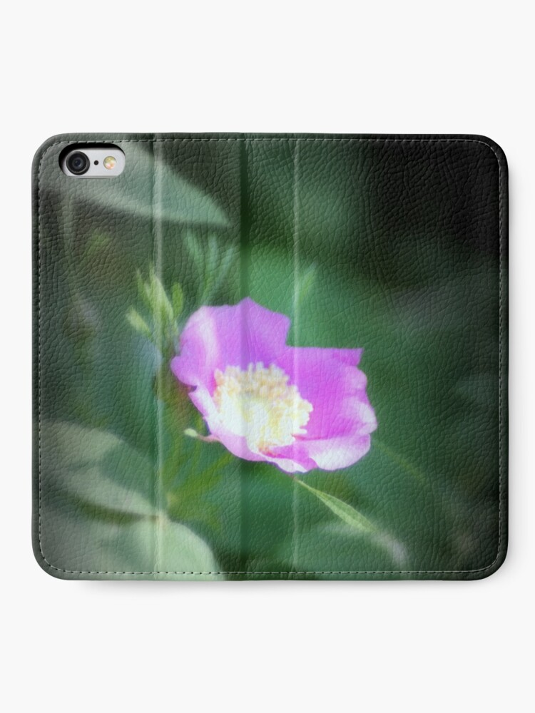 Alternate view of Old fashioned pink rose, near Trojan pond, Oregon iPhone Wallet