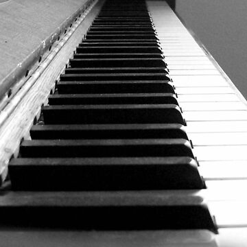 Keyboard by birdinsun