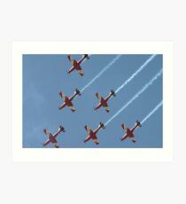 Formation Flying Art Print
