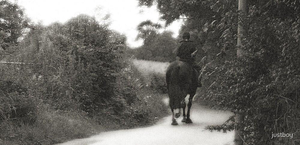 Horse by Allan Maxwell