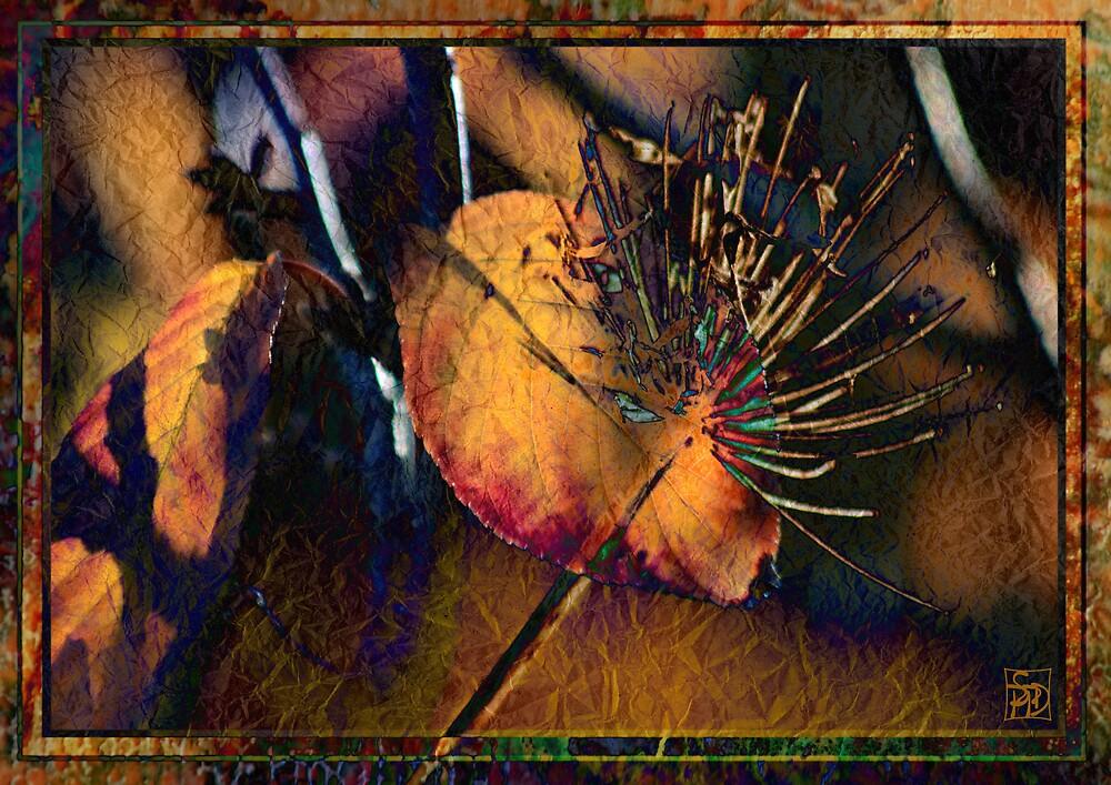 Celebrating Autumn by Sabine Spiesser