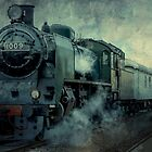 Steam Engine #1009 by Theresa Campbell