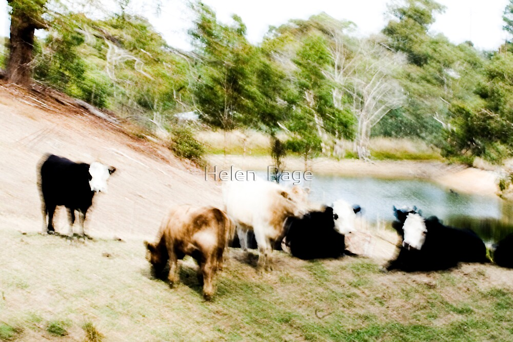 Blurred Vision by Helen  Page