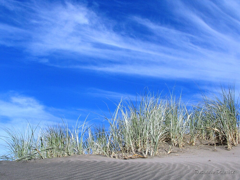 gras on black sand .. by Susanne Schmitz