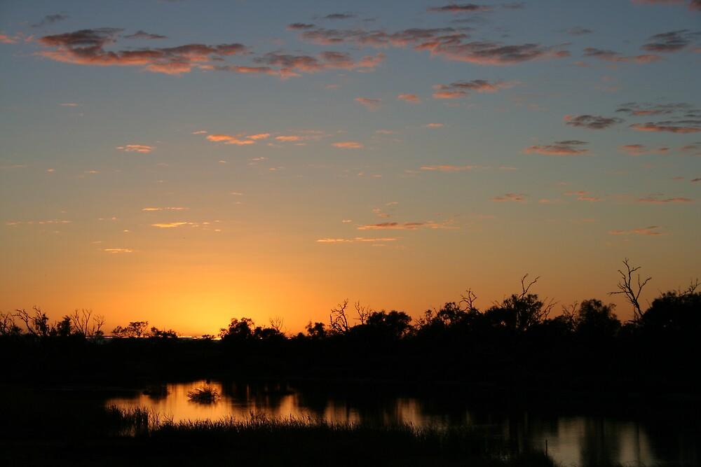 Sunrise Birdsville by Bronwyn  Murphy