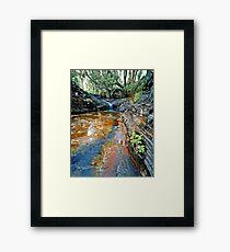 Kalamina Falls, Karijini NP Framed Print