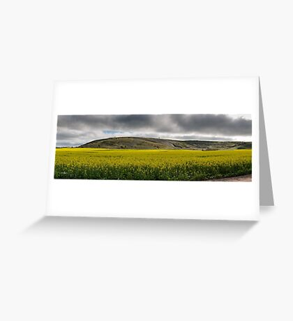 Westdale Canola Greeting Card