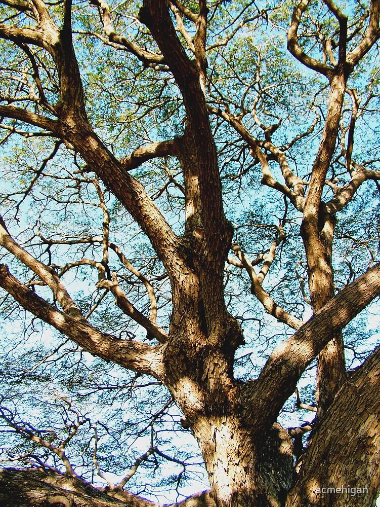 tree by acmehigan