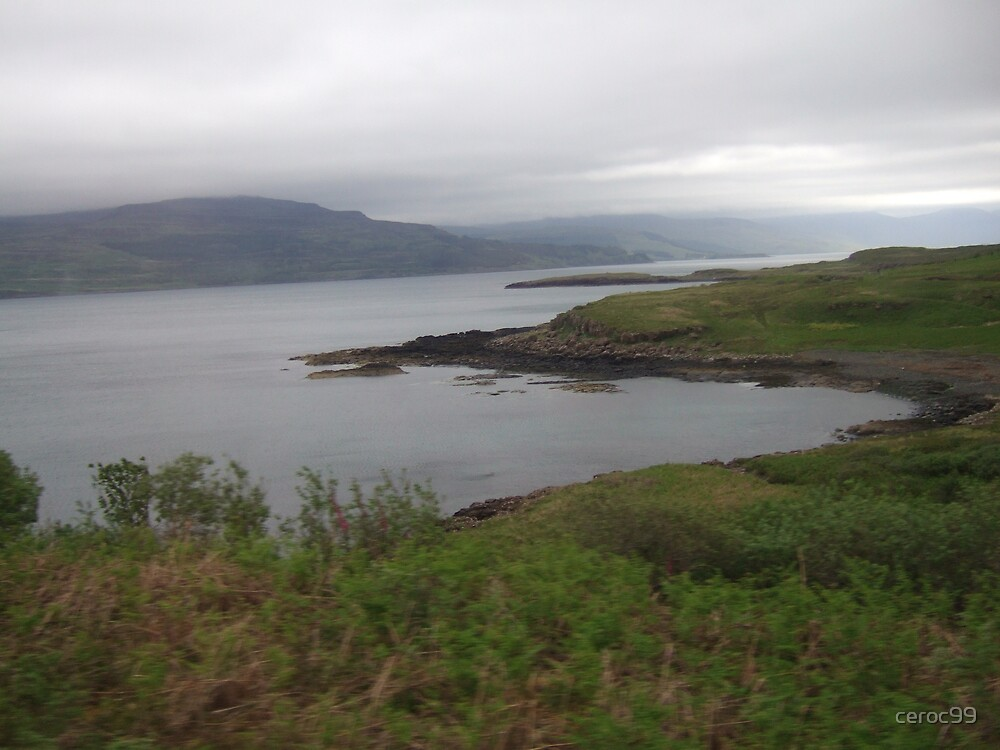 Landscape on the Fhionnport to Craignure Road by ceroc99