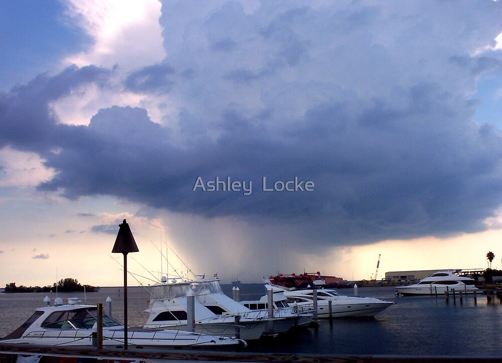 Rain Storm 2 by Ashley  Locke